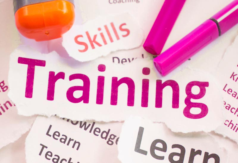 Training and Development You Can Rely On